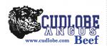 Cudlobe Angus
